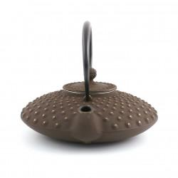 Japanese cotton curtain Noren, HAKURAI KOKESHI