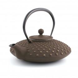 Japanese cotton curtain Noren, HAKURAI TSUBAKI PINK